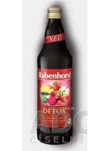 Rabenhorst DETOX šťava